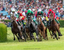 Most Derby 6/2013