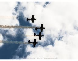 Aviatická pouť 2014 – The Flying Bulls